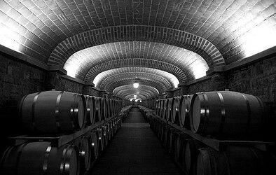 Wine Cellar Maintenance