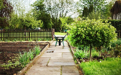 Makeover Your Garden and Terrace