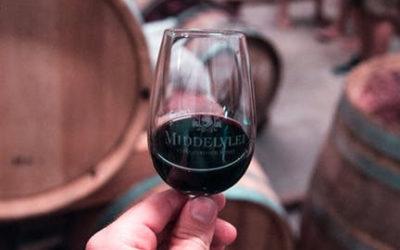 Wine Tasting Tips for Beginners